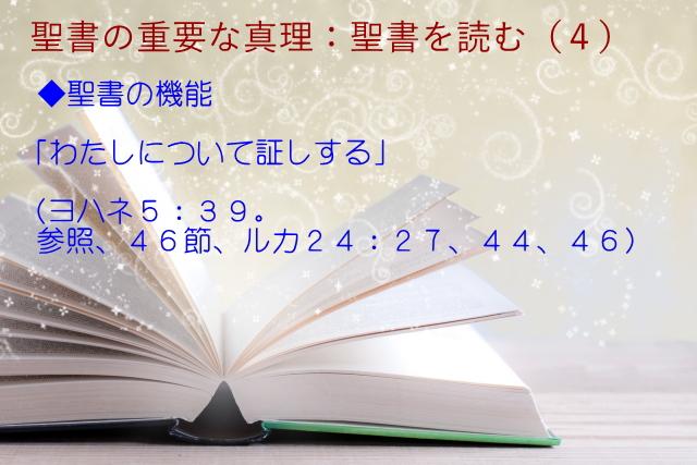 聖書の機能:「わたし(主イエス)について証しする」:聖書の重要な真理【聖書を読む】(4)