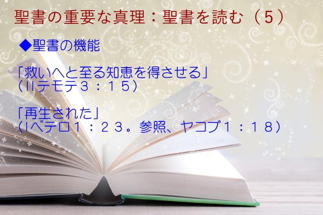 聖書の機能:「救いへと至る知恵を得させる」「再生された」:聖書の重要な真理【聖書を読む】(5)