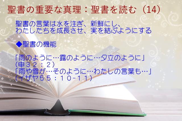 聖書の機能:聖書の言葉は水を注ぎ、新鮮にし、わたしたちを成長させ、実を結ぶようにする「雨のように…露のように…夕立のように」「雨や雪が…そのように」:聖書の重要な真理【聖書を読む】(14)