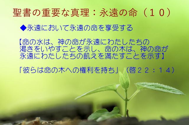 永遠において永遠の命を享受する「命の水は、神の命が永遠にわたしたちの渇きをいやすことを示し、命の木は、神の命が永遠にわたしたちの飢えを満たすことを示す」:聖書の重要な真理【永遠の命】(10)